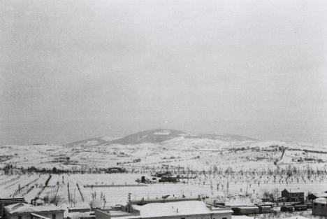 Neve 1960 2