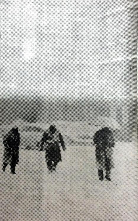 Neve 1960