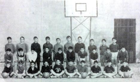 leva Basket
