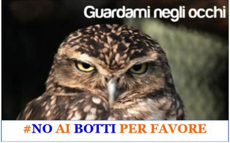 No Botti