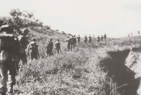 11 luglio corpo d_armata polacco