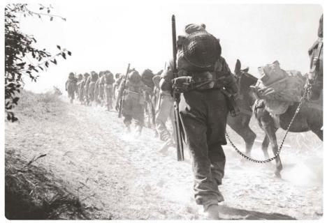 1944 pol