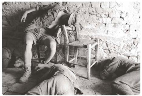 1944 tede