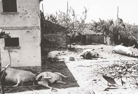 7 luglio 1944_1