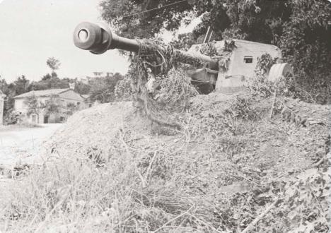 Artiglieria Polacca