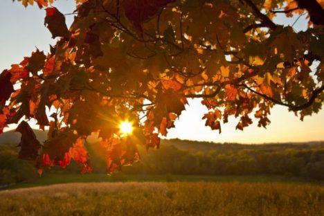 autunno-splendido